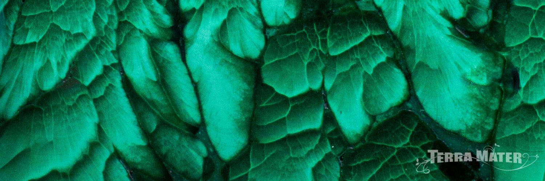 Malachite détail pierre polie