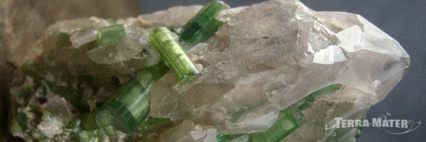 Tourmaline verte verdélite sur quartz