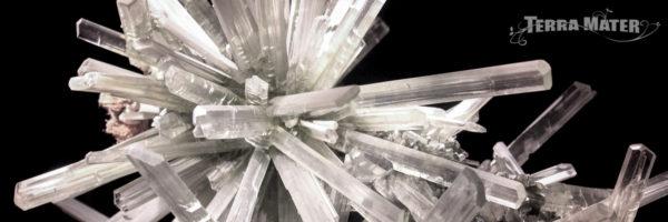 Groupe de cristaux de sélénite