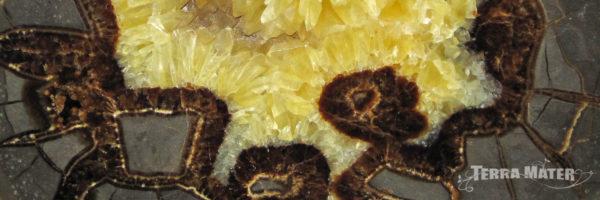 Nodule de septaria et calcite jaune