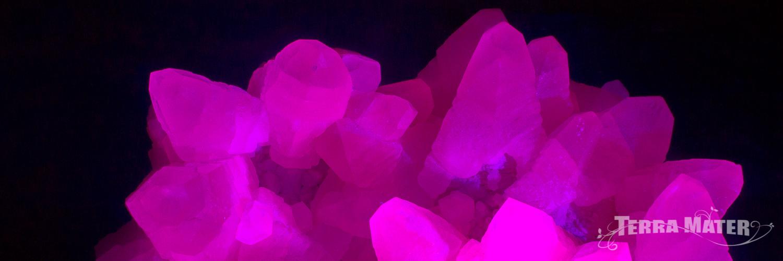 Manganocalcite sous lumière ultraviolette - Bulgarie
