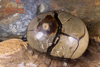 Galet de septaria de Madagascar